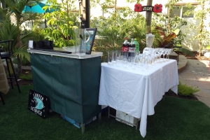 Portable bar with green trim