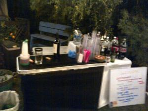 Lousy picture of my bar