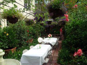 Urban garden in Los Angeles