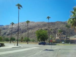 The desert in October
