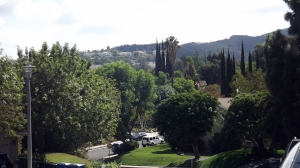 The hills of Tarzana